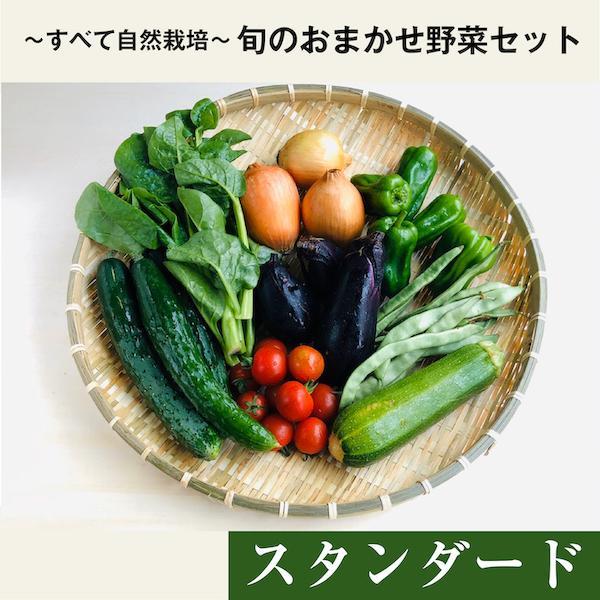 【中身おまかせ】旬の自然栽培野菜セット|ak-friend