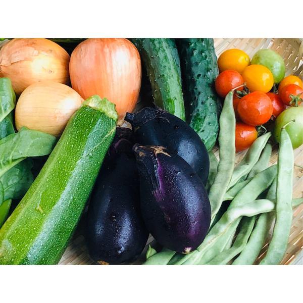 【中身おまかせ】旬の自然栽培野菜セット|ak-friend|02