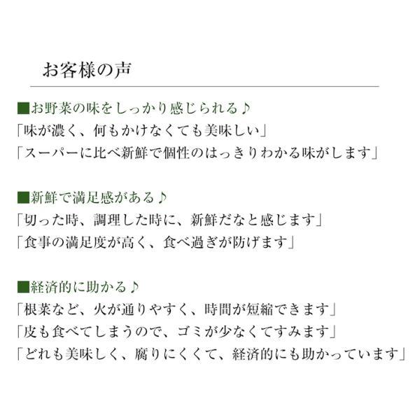 【中身おまかせ】旬の自然栽培野菜セット|ak-friend|03