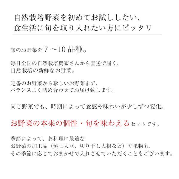 【中身おまかせ】旬の自然栽培野菜セット|ak-friend|04