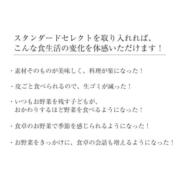 【中身おまかせ】旬の自然栽培野菜セット|ak-friend|05