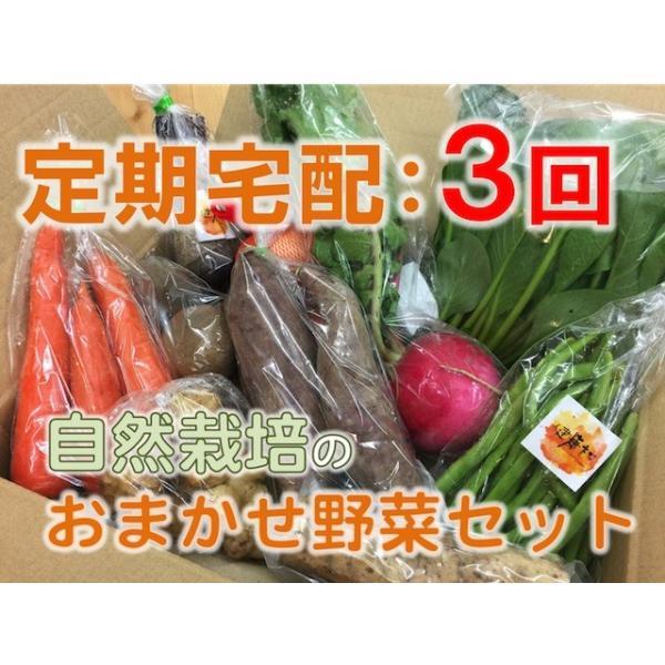 【定期宅配:3回】おまかせ☆自然栽培野菜セット