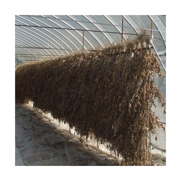 農家手造り 十二割こうじ仕込み味噌10kg樽詰 12月限定仕込み|akagefarm|02