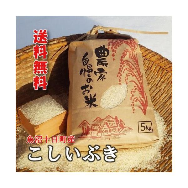 魚沼十日町産こしいぶき 棚田天水田米 5kg 30年産|akagefarm