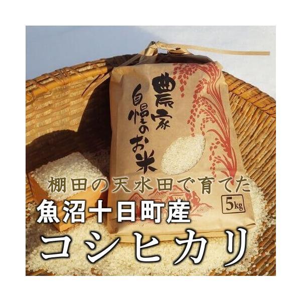 魚沼産コシヒカリ 棚田天水田米 5kg 令和1年産 精米直後発送 akagefarm