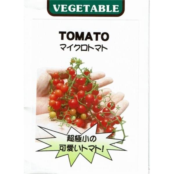 マイクロトマト レッド 苗 茶ポット akagefarm 04