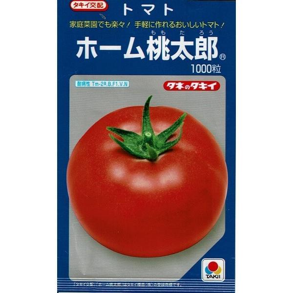 ホーム桃太郎苗 9cm黒ポット |akagefarm|03