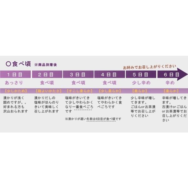 【自宅用】水なすぬか漬け10個入|akashiya|03