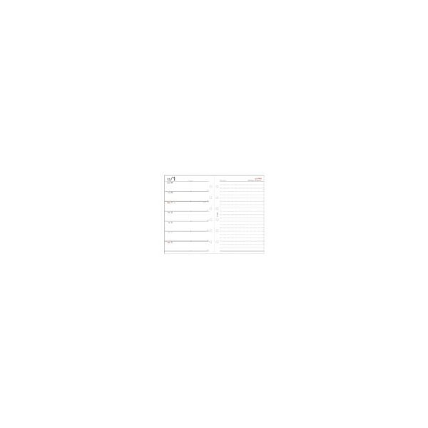 ダイアリー 手帳 ダイゴー DAIGO 2020年1月始まり システム手帳リフィル ミニサイズ6穴 1週間+横罫 E1352 akatsuka-bs 04