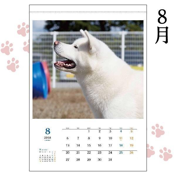 秋田犬カレンダー2018(A2カレンダー×1)犬 カレンダー 動物 かわいい もふもふ ザキトワ 秋田犬|akitagokoro|03