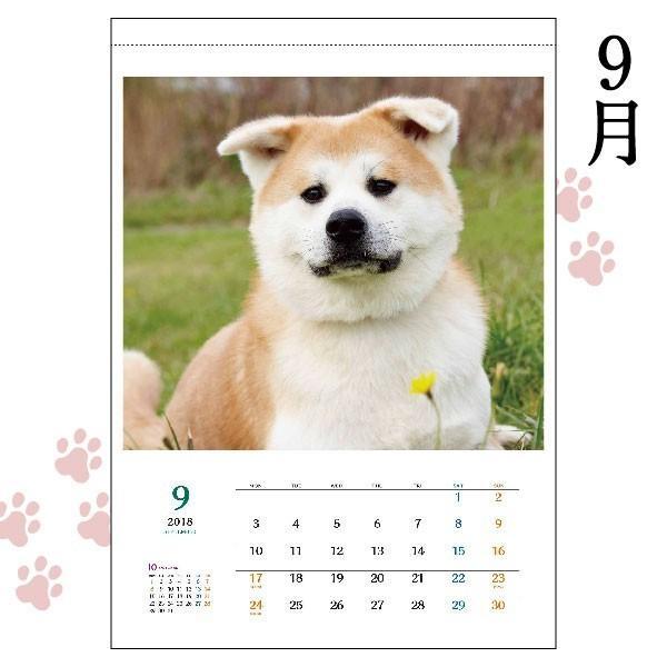秋田犬カレンダー2018(A2カレンダー×1)犬 カレンダー 動物 かわいい もふもふ ザキトワ 秋田犬|akitagokoro|04
