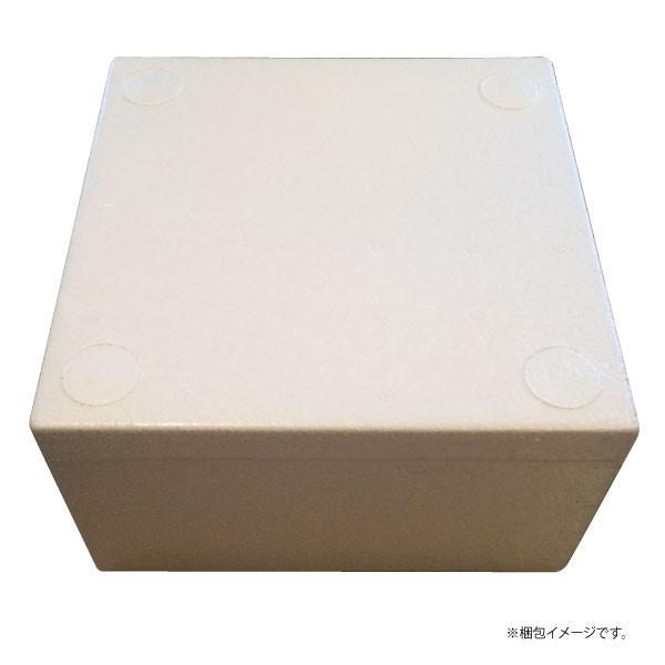 キムチ (300g) 秋田鹿角名物豚ホルモン 幸楽の美味しいキムチ やみつき 焼肉 バーベキュー[ホルモン幸楽]冷凍|akitagokoro|04