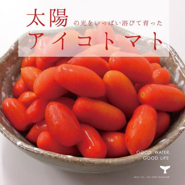 夏季限定 丹波篠山産 アイコトマト 2kg 500g 4袋 産地直送 糖度8〜9 完熟トマト 送料無料