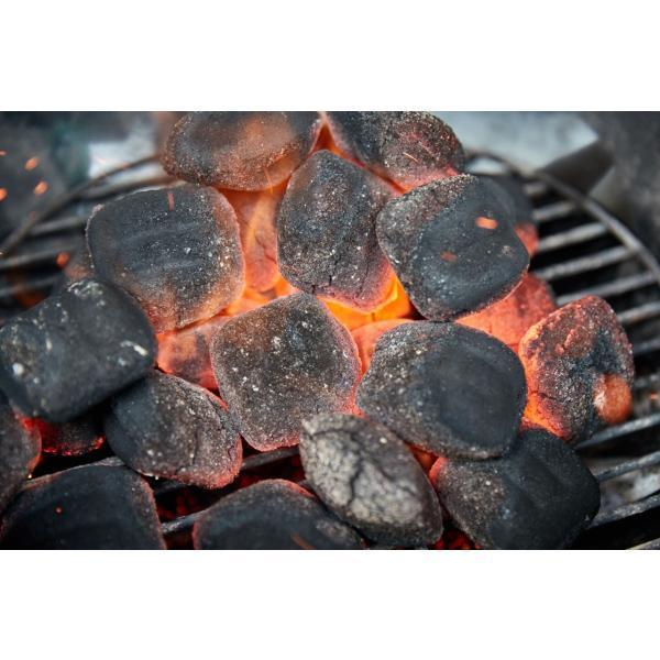 ヤシガラ灰 ハイファイブ 「ココナッツ チャコール」|alex2|03