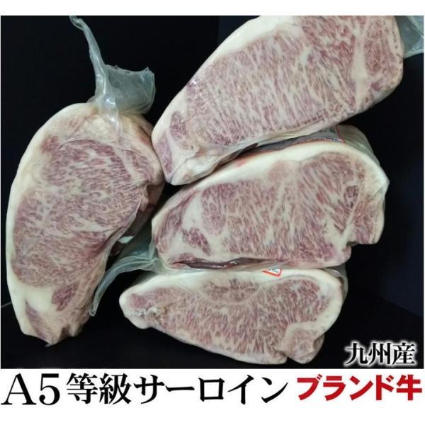 九州ブランド 黒毛和牛A5等級サーロインブロック ブロック肉 かたまり