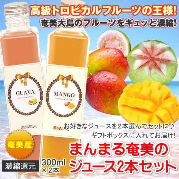 フルーツジュース セット まんまる奄美 ジュース300ml×2本 マンゴー パッションフルーツ グアバ たんかん すもも ギフト ジュース 奄美大島 お土産