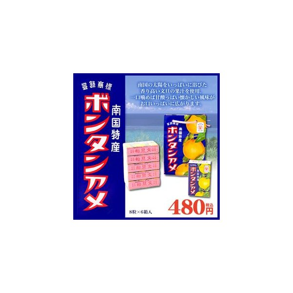 ボンタンアメ 8粒×6個入り セイカ食品
