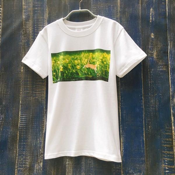 浮きにダイブ猫Tシャツ 釣り XS〜Lサイズ 白 ホワイト シンプル メンズ レディース トラ猫 綿100% 実写ネコ|amaneko|02