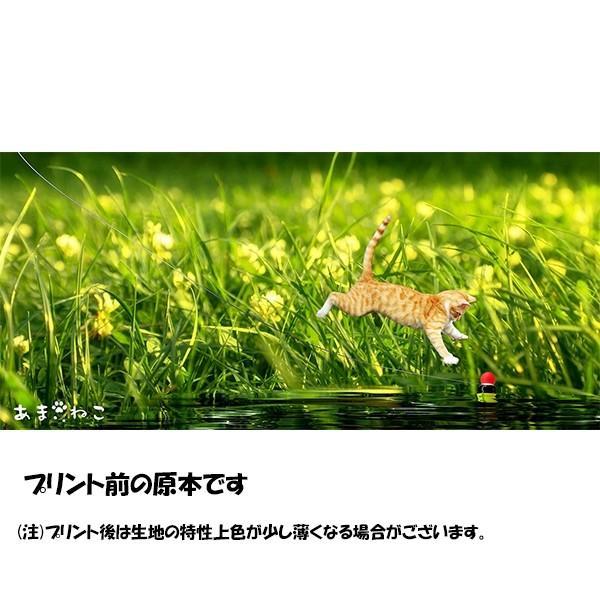 浮きにダイブ猫Tシャツ 釣り XS〜Lサイズ 白 ホワイト シンプル メンズ レディース トラ猫 綿100% 実写ネコ|amaneko|08