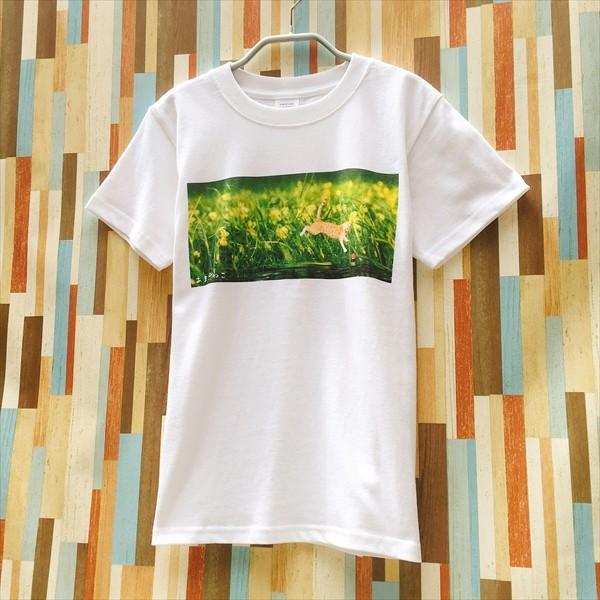 浮きにダイブ猫Tシャツ 釣り XS〜Lサイズ 白 ホワイト シンプル メンズ レディース トラ猫 綿100% 実写ネコ|amaneko|05
