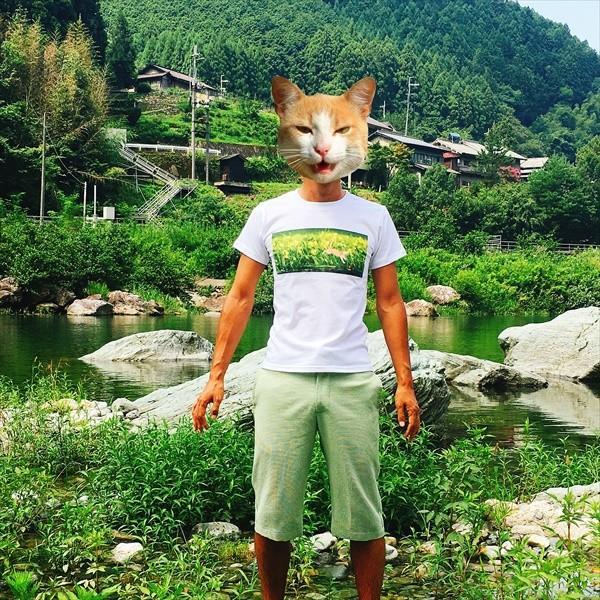 浮きにダイブ猫Tシャツ 釣り XS〜Lサイズ 白 ホワイト シンプル メンズ レディース トラ猫 綿100% 実写ネコ|amaneko|06
