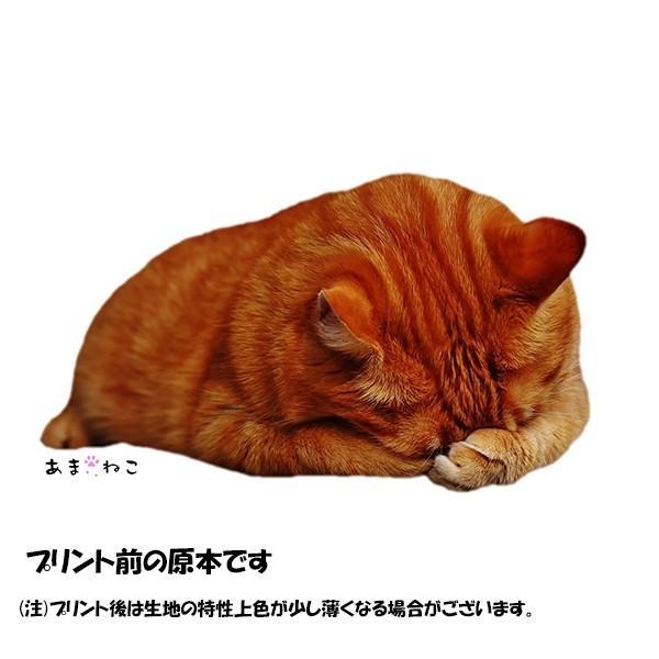 顔隠す猫トートバッグ 茶トラ トラ猫 Lサイズ 男女兼用 20リットル 大容量 ショッピングバッグ エコバッグ|amaneko|08