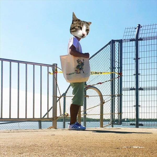 ボタン柄 猫トートバッグ 貼り絵風 Lサイズ 20リットル 大容量 厚手 ショッピングバッグ 綿100% ちぎり絵風 和柄 和紙|amaneko|05