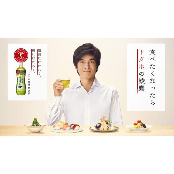 綾鷹 特選茶 トクホ PET 500ml 24本入 1ケース あやたか 茶 1箱|amcom|03
