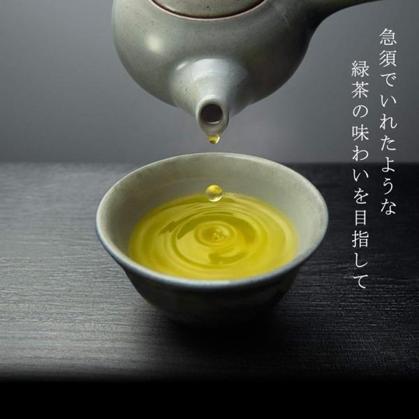 綾鷹 特選茶 トクホ PET 500ml 24本入 1ケース あやたか 茶 1箱|amcom|04