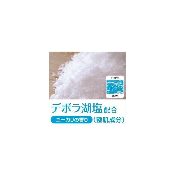 デボラ湖塩配合 10kg