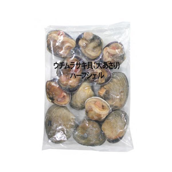 華成 ウチムラサキ貝(大あさり)11/15 1kg