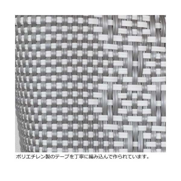 SANRAMI (サンラミ) ポリエチレン かごバッグ メルカドバッグ [Lサイズ] 384018 amico-di-ineya 06