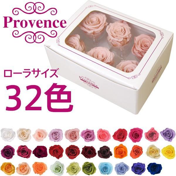プリザーブドフラワー プロヴァンスローズ ローラ6輪 フラワーアレンジメント 花材 バラ 薔薇