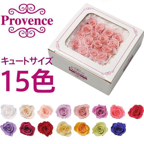 プリザーブドフラワー プロヴァンスローズ キュート16輪 フラワーアレンジメント 花材 バラ 薔薇