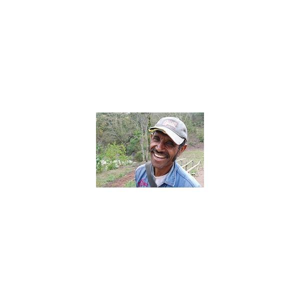 送料無料 自家焙煎 コーヒー 郵送できる ドリップバッグ 11g × 10袋入 徳用 オーガニック 東ティモール フェアトレード スペシャルティ シングルオリジン|amisbazar-jp|09