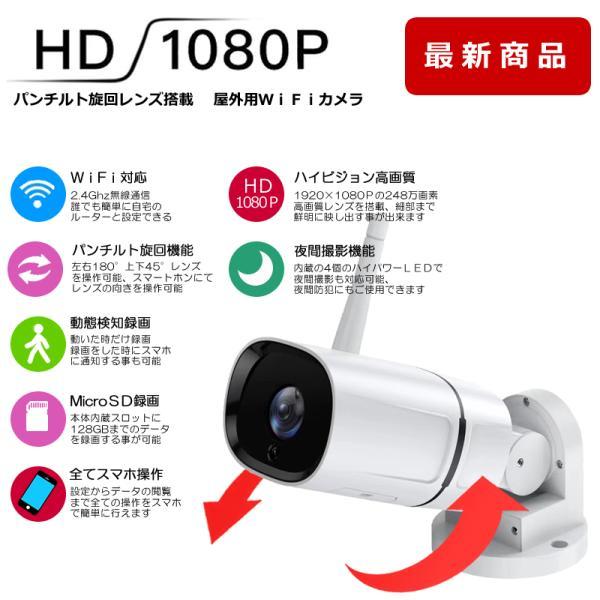 ペットカメラ 留守番  ベビーモニター  防犯カメラ 自動追跡 自動追尾 ワイヤレス WiFi   スイングカメラ AV-IPCAM02|andavision|02
