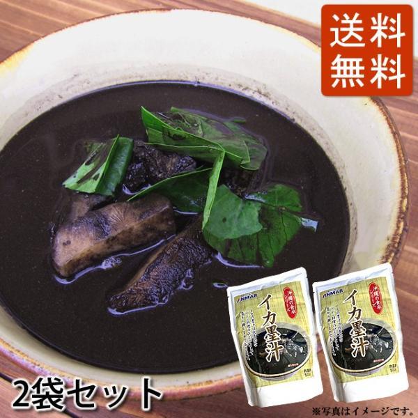 イカスミ汁(イカ墨汁) 500g×2袋セット 送料無料 かつお風味 沖縄料理 4960294700191