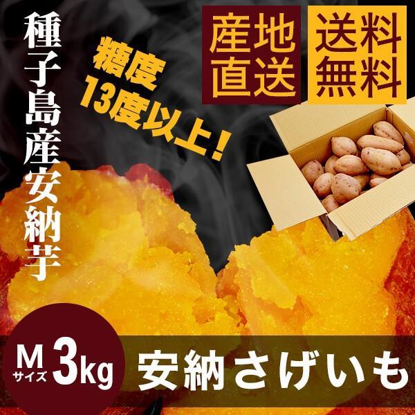 【送料無料】種子島産安納芋3kg【Mサイズ】|annouimoreimei
