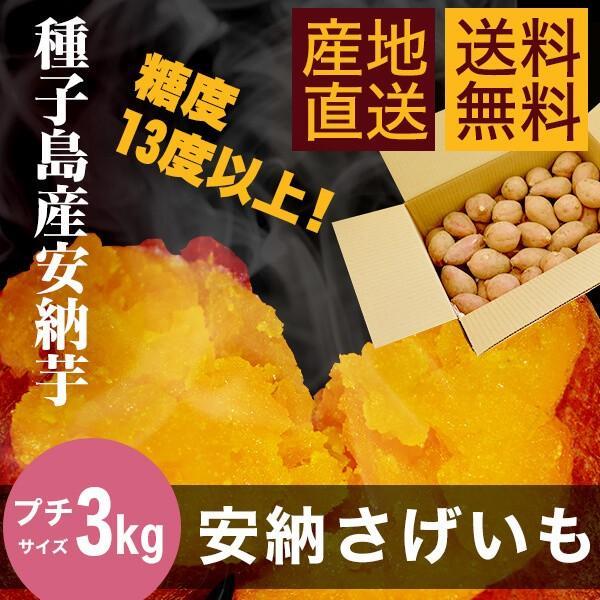【送料無料】種子島産安納芋(安納さげいも) 3kg【プチサイズ】|annouimoreimei