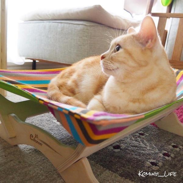 大型猫ハンモック 猫ベッド Catoneer 一生モノの猫ハンモックベッド 猫用ハンモックベット 猫 ベッド  おしゃれ 快適な猫ハンモック   洗える  夏冬|anschluss|11