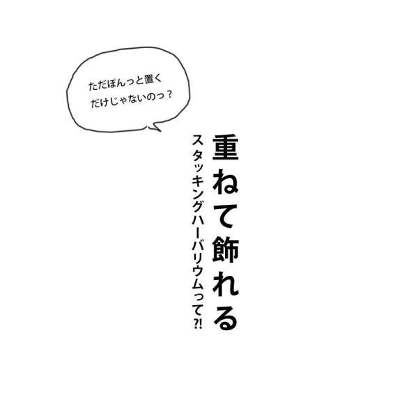 【単品】ハーバリウム 出産祝い ギフト プレゼント 花 スタッキング ボトル フラワー 母の日 クリスマス 敬老の日 誕生日 結婚 新築 お祝い アンティカフェ|antiqcafe|05