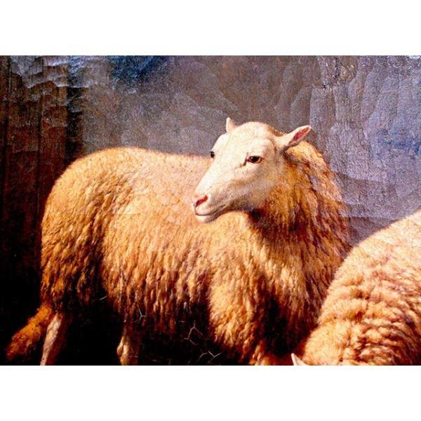 Theo Van Sluys (Belgian, 1849-1931) 「厩舎の羊と鶏」|antiquesjikoh|02