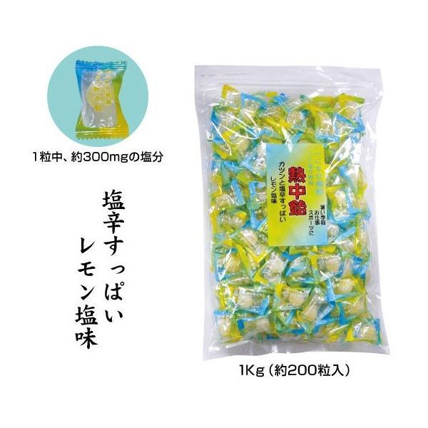 熱中症対策 熱中飴 塩辛すっぱいレモン味 1kg(約200粒入り) CN3007-L