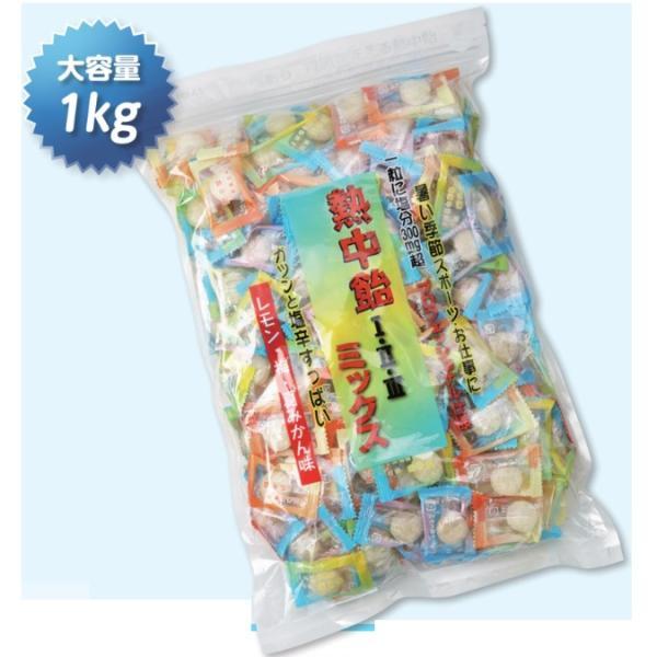 熱中症対策 熱中飴3味ミックス 5袋セット 1袋1kg (約185粒入) HO-333