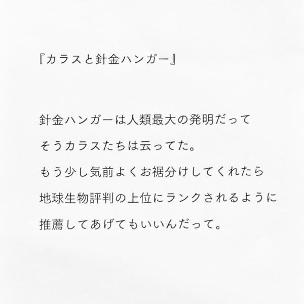 ガーゼポーチ カラス morita MiW ペンケース 筆箱 送料200円 1万円以上送料無料|aodama-zakka|17