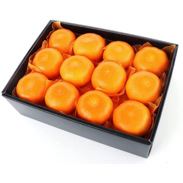 お中元 フルーツギフト 詰め合わせ 贈り物 青木フルーツ みかん Sサイズ[みかん](常温便)
