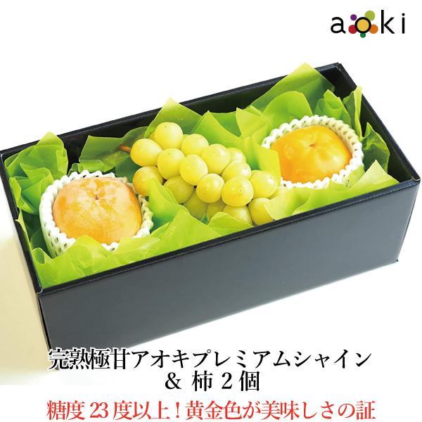 【青木フルーツ】ゴールドシャインと柿2個セット[シャインマスカット 柿](クール便)
