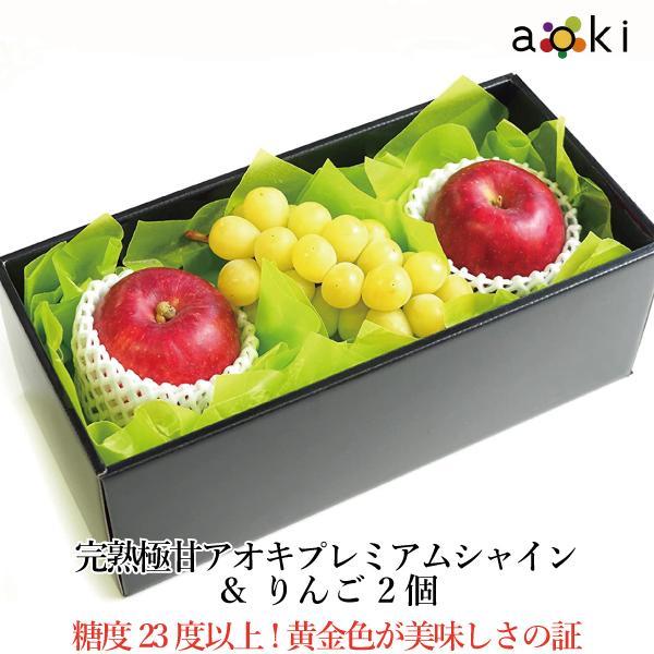 【青木フルーツ】ゴールドシャインとりんご2個セット[シャインマスカット りんご](クール便)