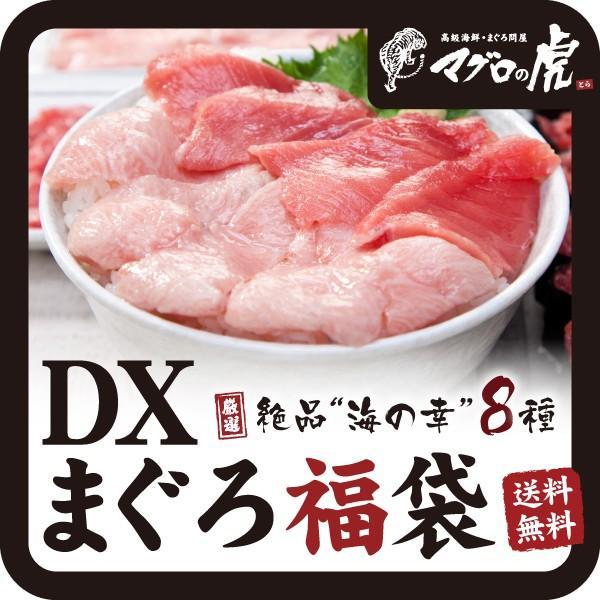 海鮮丼 DX マグロ 福袋セット 本まぐろ お取り寄せ グルメ ギフト まぐろ 鮪|aomonya