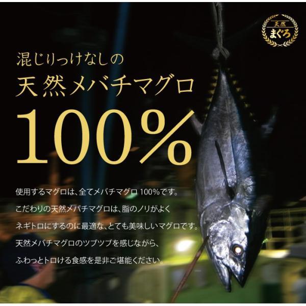 ネギトロ 100g 無添加 天然 マグロ 粗挽き 刺身 お取り寄せ グルメ ギフト まぐろ 鮪 aomonya 06
